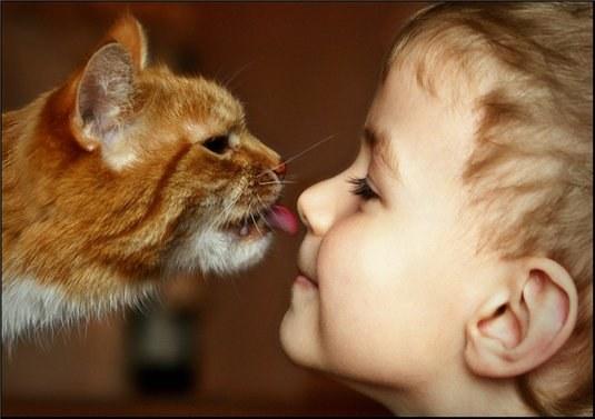 Как научить детей любить животных