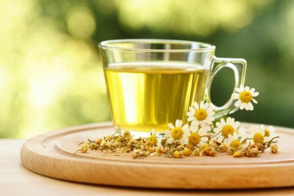 What sedative herbs it is possible to drink pregnant