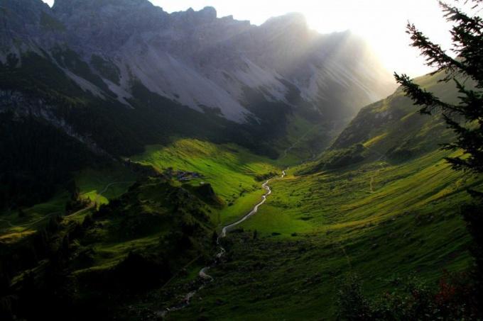 Долины и луга - типичное место обитание прекрасных нимф