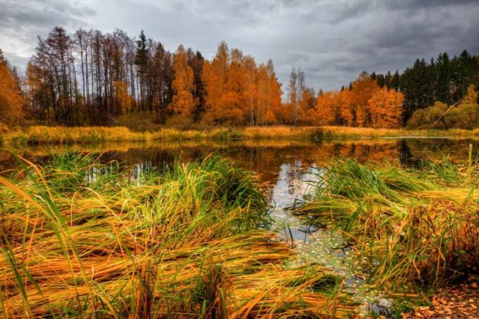 Лучший отдых подарит общение с природой