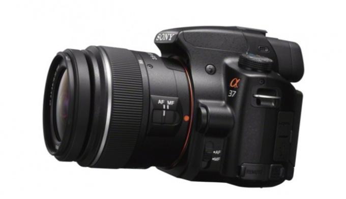 Какой зеркальный фотоаппарат самый дешевый