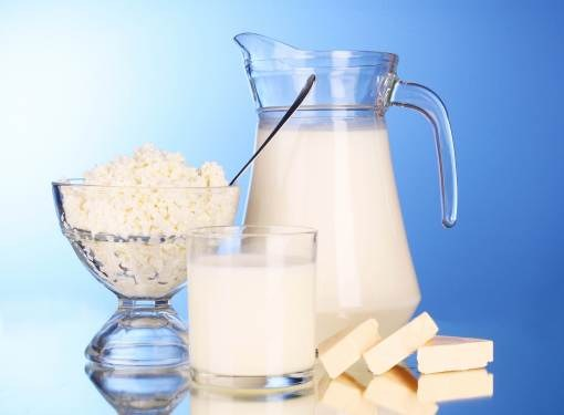 What foods contain the most calcium