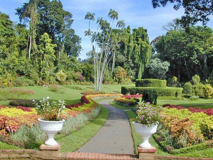 Королевские ботанические сады