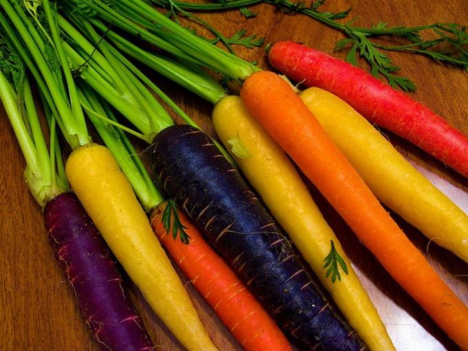 Разноцветная морковь снова в моде