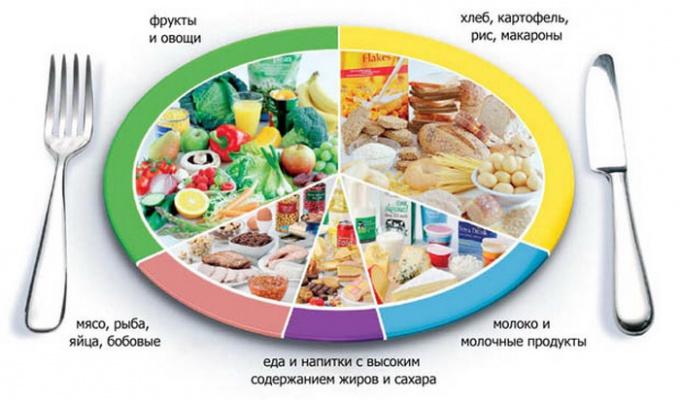 Необходимое соотношение продуктов ежесуточного рациона питания