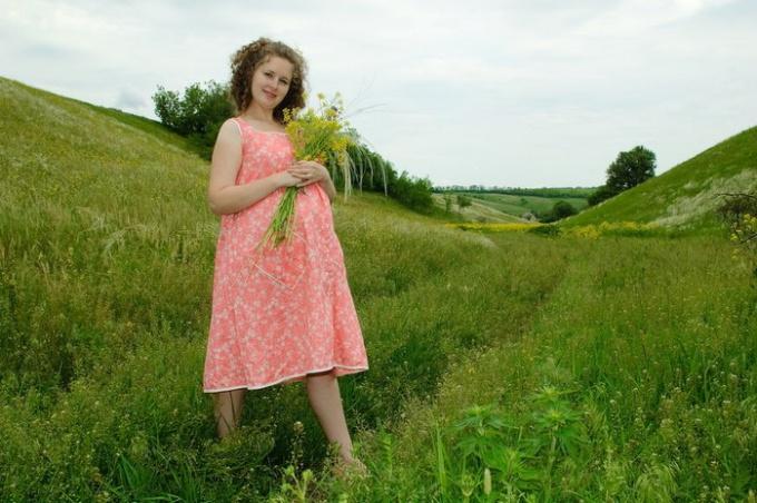 какие лекарственные травы можно беременным?