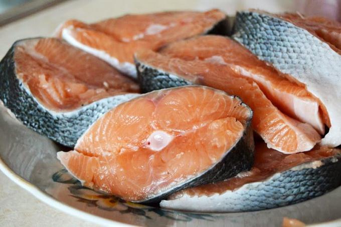 Горбуша является некостистым видом рыб