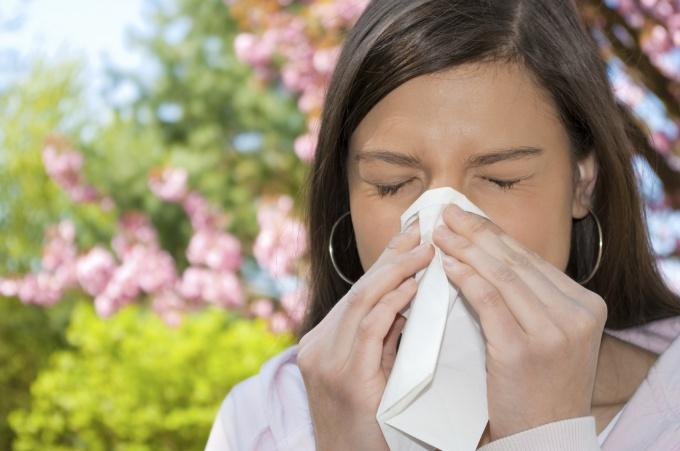 Что такое аллергия, чем она опасна