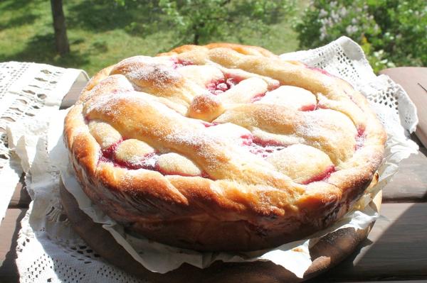 Пирог с начинкой из курицы со смородиной