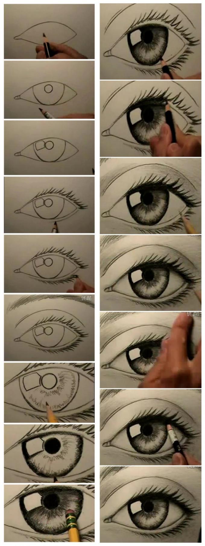 Поэтапный рисунок карандашом