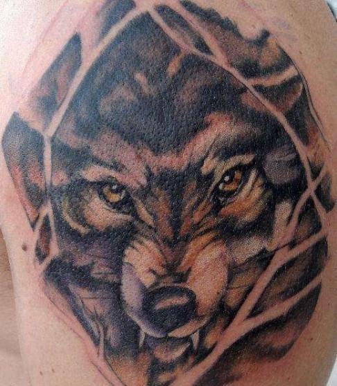 tattoo-vlg.ru