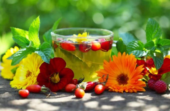 Ингредиенты для травяного чая