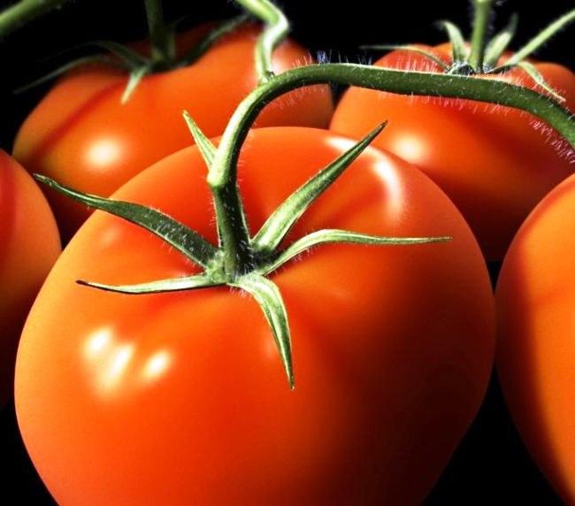 Сбор семян помидоров