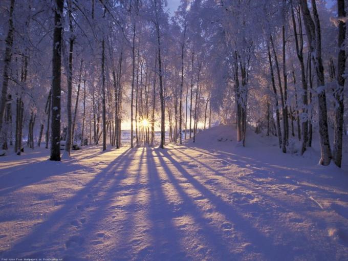 Какие изменения происходят в природе зимой