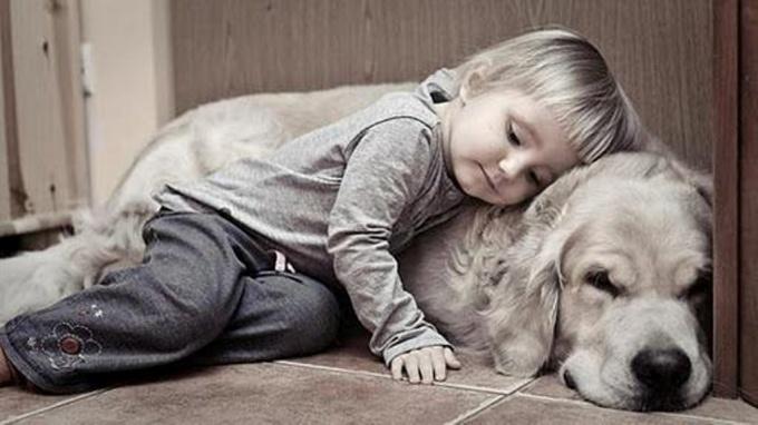 Ребенок и четвероногие друзья