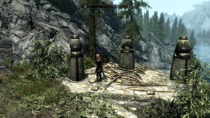 Камень Вора рядом с Ривервудом