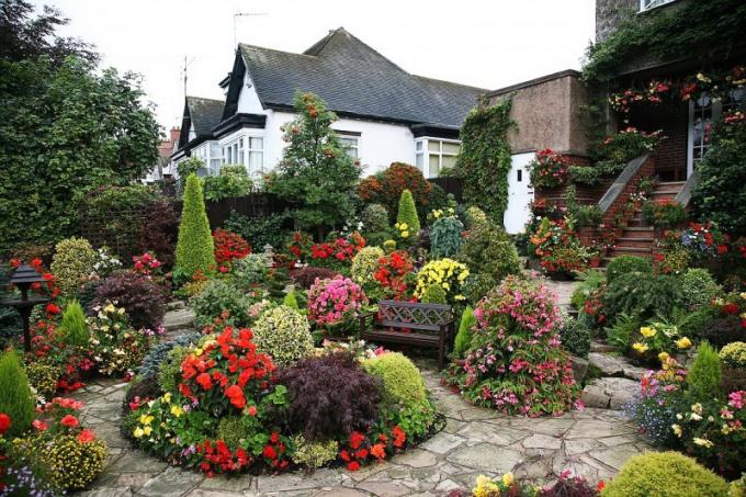 Как все разместить на садовом участке