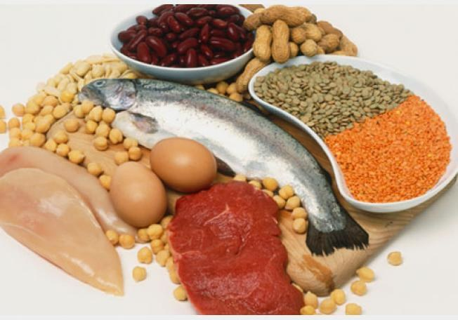 Sources of protein for the human body
