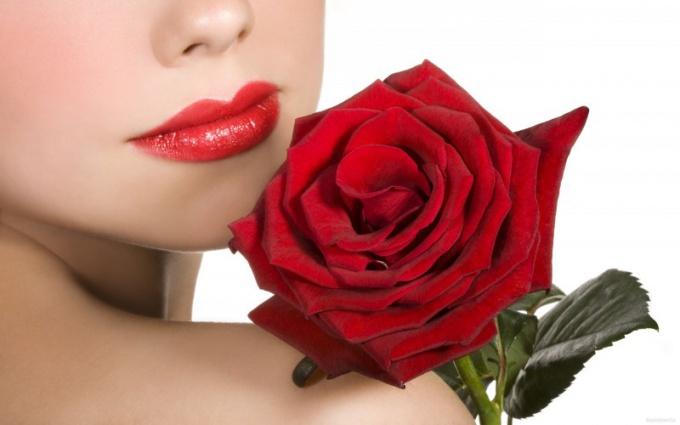 Какие цветы любят все девушки