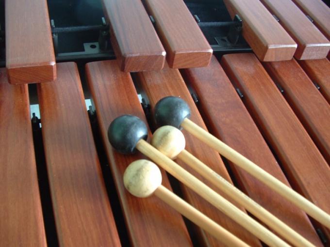 На ксилофоне можно играть и вдвоем