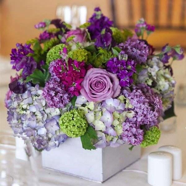 Сохранность цветов
