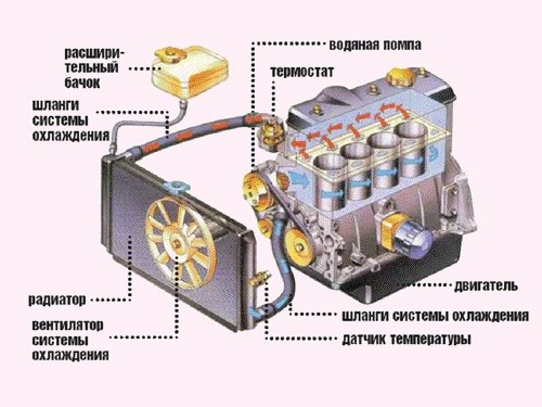 The cooling system of the internal combustion engine