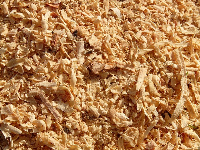 What better sawdust for Smoking