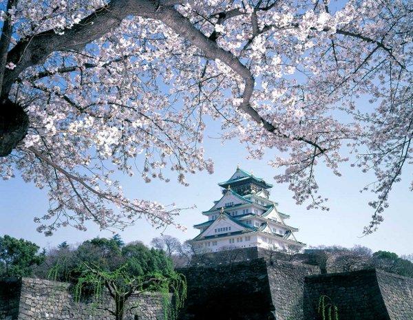 Японская медицина: диагностика посредством внешнего осмотра