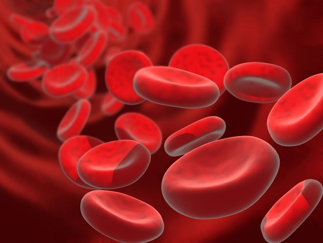 Anemia: symptoms, diagnosis and treatment