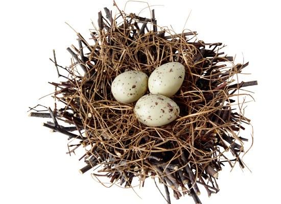 Какие яйца лучше всего есть