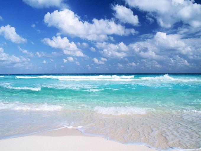 Тихий океан - самый крупный океан на Земле