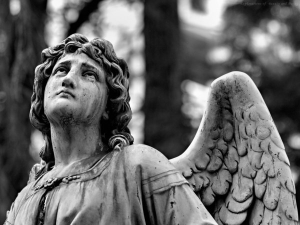 Angel. Headstone.