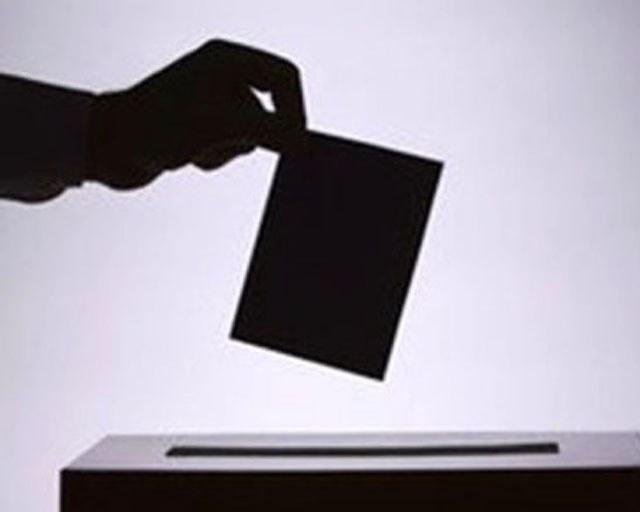 как называется всенародное голосование граждан