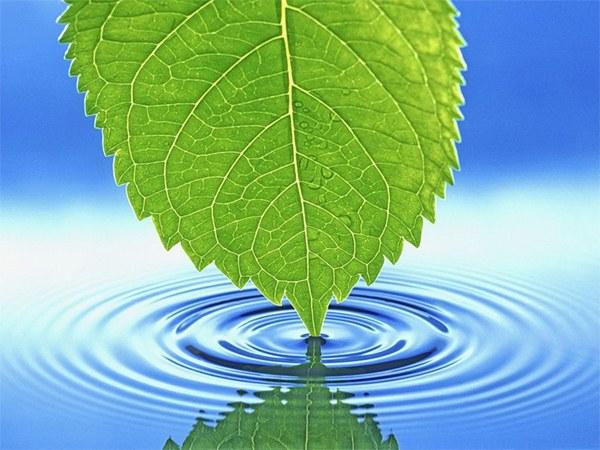 Вода — колыбель жизни во Вселенной