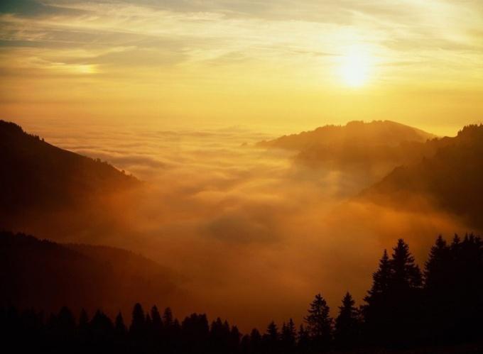 В какие времена года можно наблюдать туман