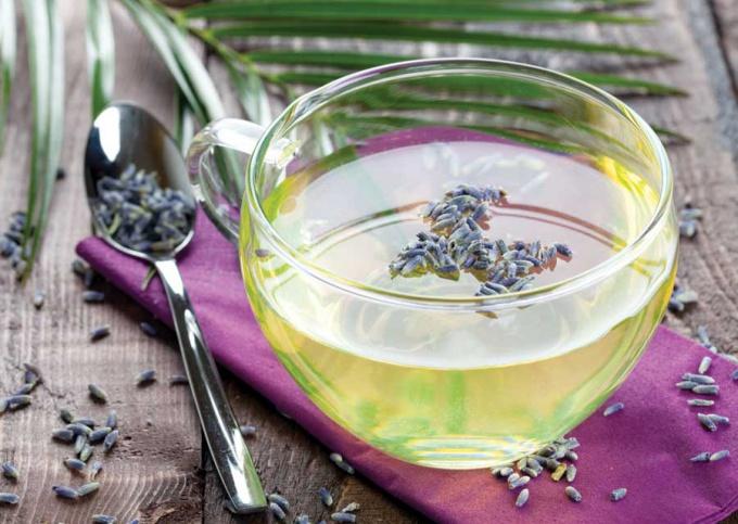 чай с лавандой фото