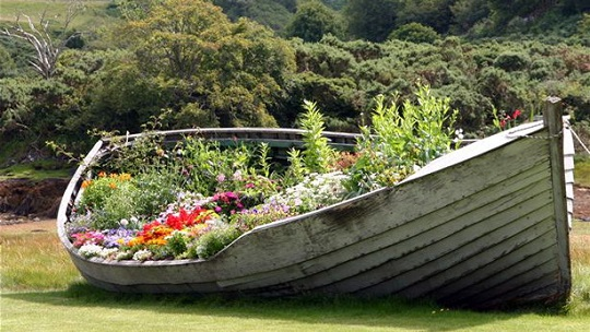 Old boat - ideas for garden design