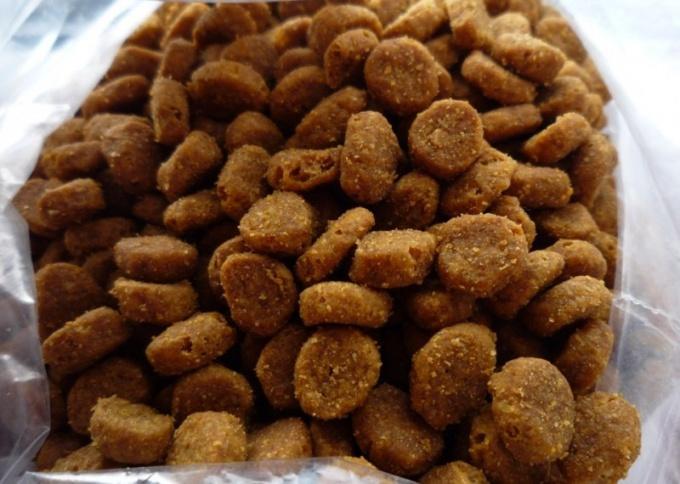 Какими кормами кормить кошку