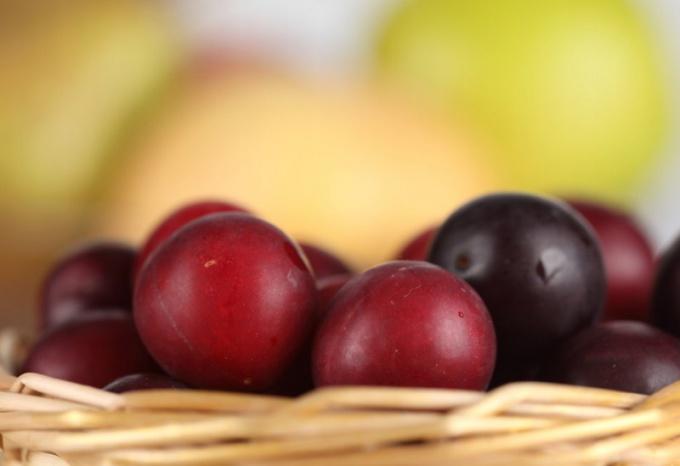 Какими витаминами богата слива