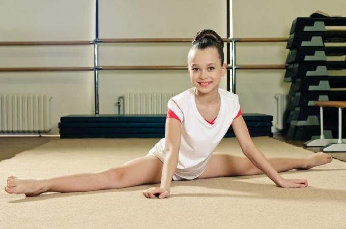 Какие бывают виды гимнастики