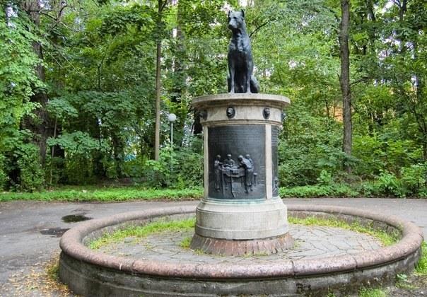 Памятник собаке Павлова в Санкт-Петербурге