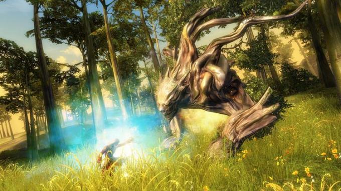 Кадр игрового процесса Guild Wars 2