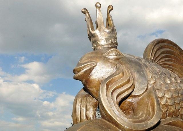 Золотая рыбка в Астрахани