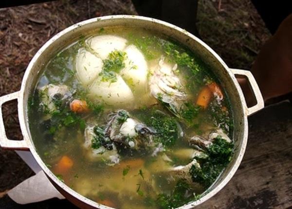 Как приготовить наваристый рыбный суп из ленка и хариуса на природе