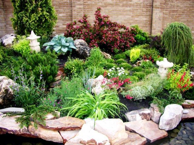 Какие растения выбрать для оформления альпийской горки