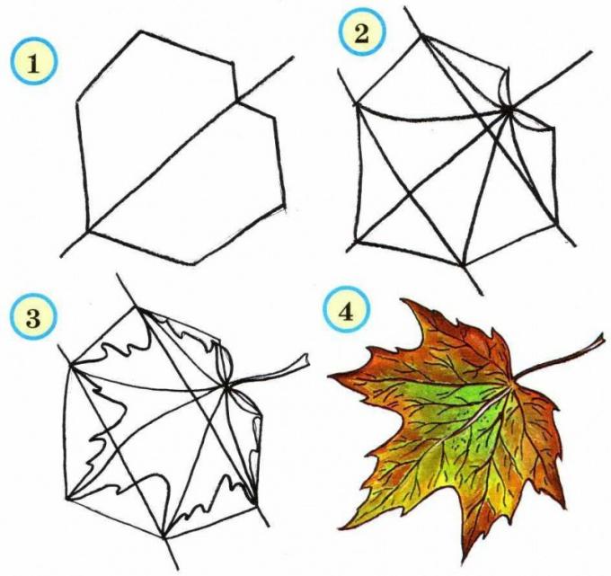 Как нарисовать осенний лист клена