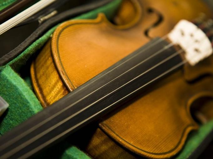 Струнные инструменты составляют основу камерного оркестра