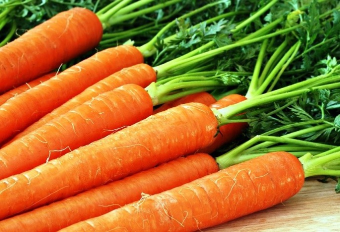 How to prepare carrot seeds for planting