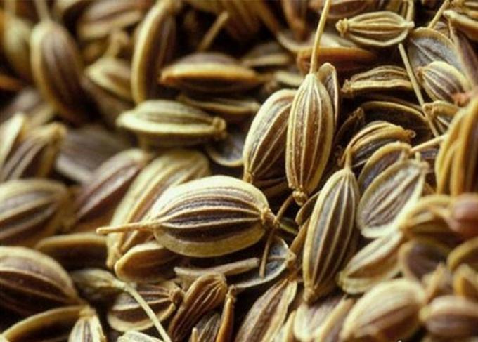Какие семена замачивают перед посадкой