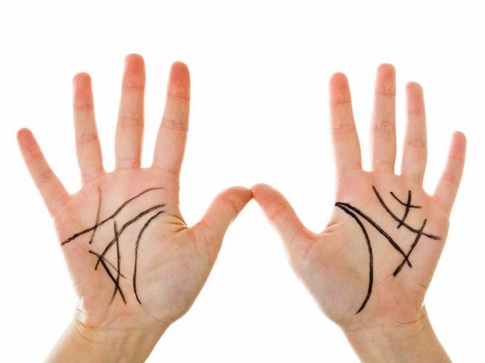 Какие линии руки считаются самыми важными?